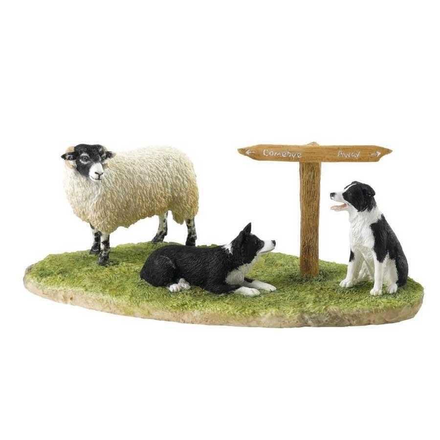 Ewe Take the Left (Swaledale)