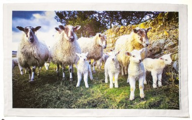 Lamb Gang Tea Towel