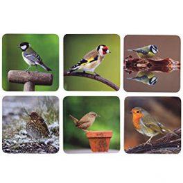 Garden Birds Coasters CM
